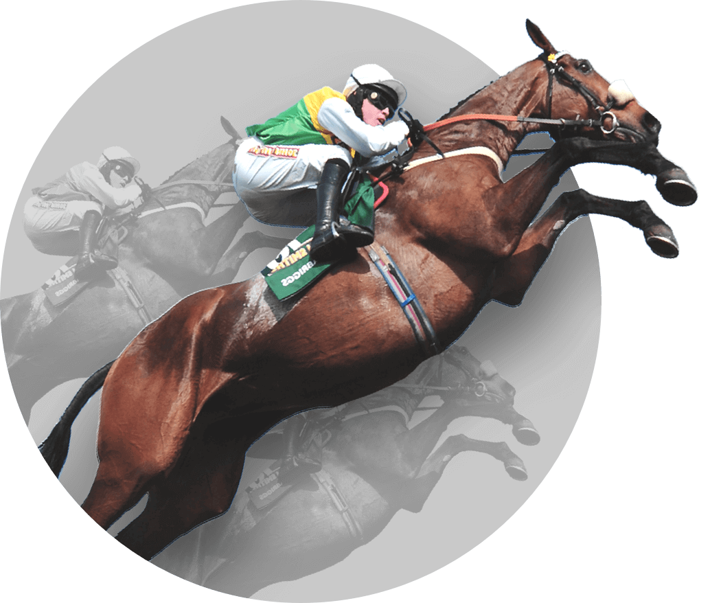 Latest News: 172nd Grand National experience